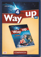 Way up 4 companion